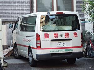 145塩田動物病院